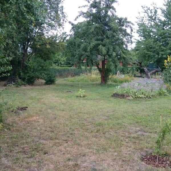 Gartenanblick mit Beet 2016