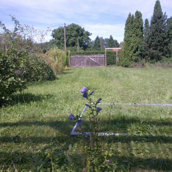 Gartenansicht 2012