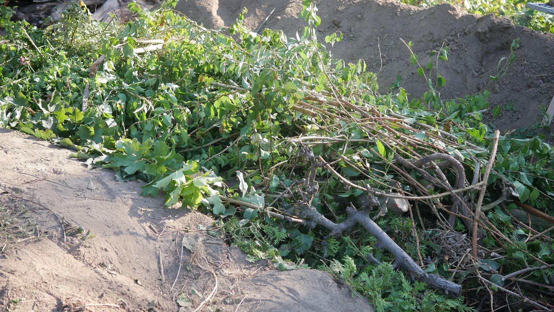 Grünschnitt Baumschnitt GartenmaterialHügelbeet Erfahrungen Hügelbeet Aufbau Hügelbeet anlegen Hügelbeet im Garten Gartenabfall wieder verwenden Hügelbeet Vorteile Hügelbeet Permakultur