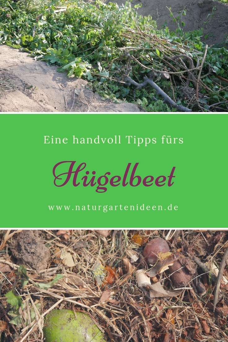 hügelbeet anlegen Hügelbeet ideen Tipps fürs Hügelbeet Vorteile Hügelbeet