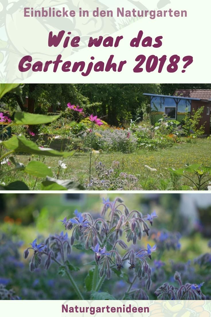 Gartenjahr 2018 Gartensaison 2018 Garteneinblick Gartenrundgang Gartenerlebnisse Gartenmomente Gemüse Korb Borretsch Blüte