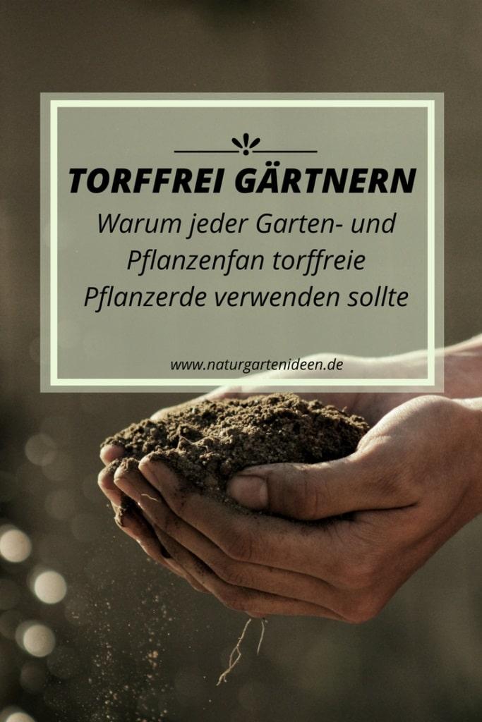 Torffreie Pflanzerde für den Klimaschutz