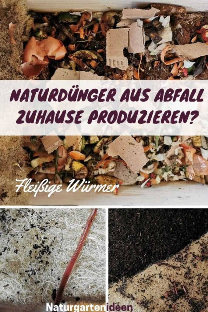 Naturdünger Natürlicher Dünger Wurmhumus Wurmkiste kompostbehälter bio erde wurmzucht küchenkomposter biomülleimer